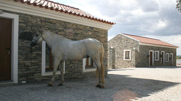 Casa dos Xarês -  1 a 2 Noites com Passeio a cavalo em Idanha-a-Nova!