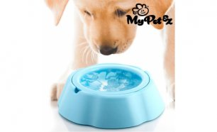 Bebedouro para Animais My Pet Frosty Bowl